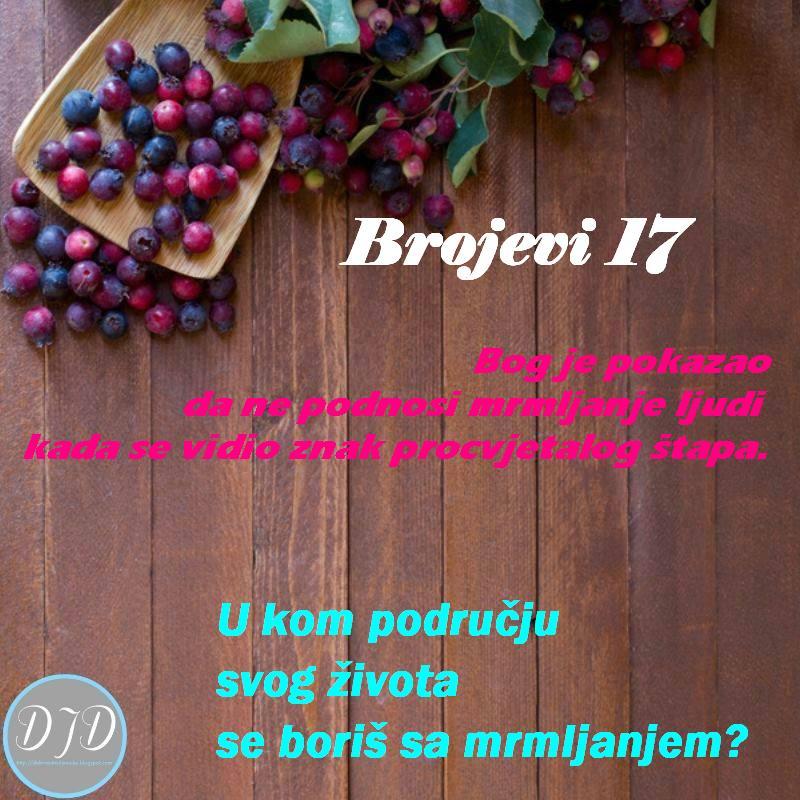 BR -pit 17