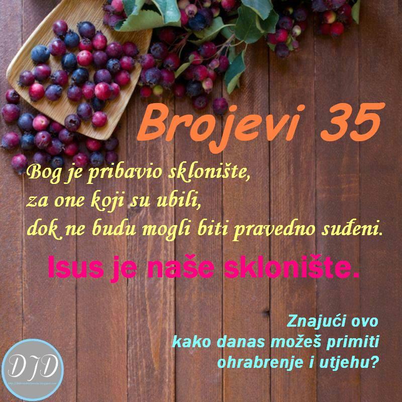 BR-pit-35