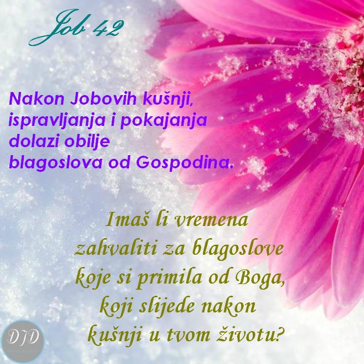pitanje-42
