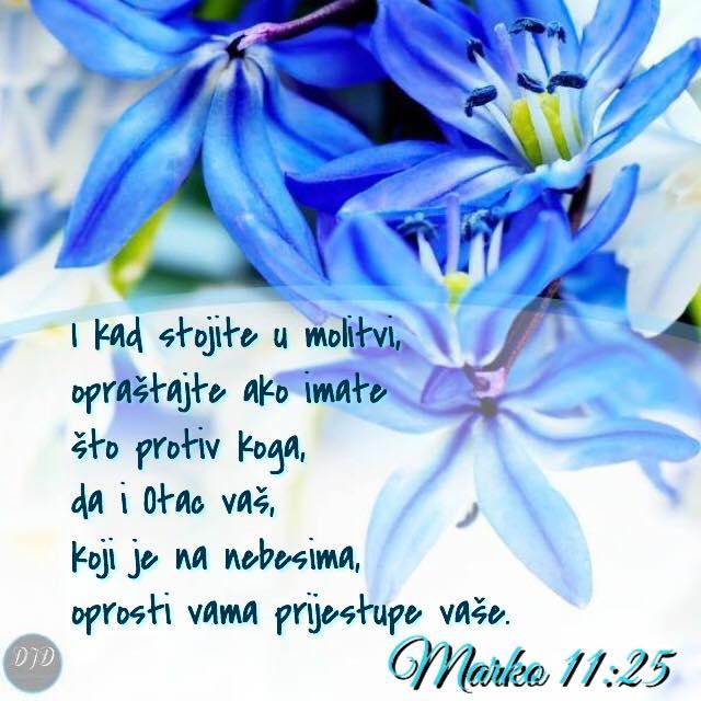 stih - 11